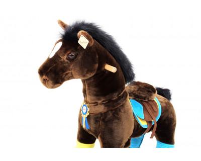 """Pony """"Spirit"""""""